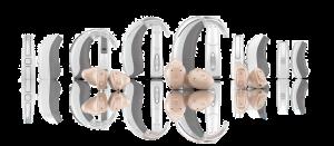 唯听助听器EVOK智擎
